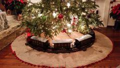 christmastree14