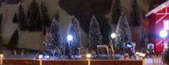Christmas Village 4 052