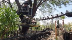 Garden Railway Treehouse Remodeled-20.JPG