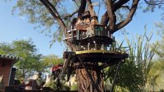 Garden Railway Treehouse Remodeled-24.JPG