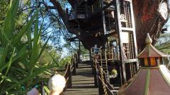 Garden Railway Treehouse Remodeled-36.JPG