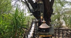 Garden Railway Treehouse Remodeled-17.JPG